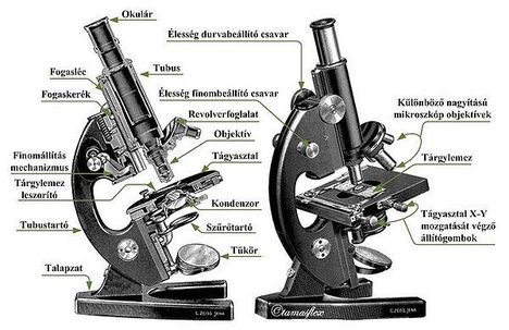 a mikroszkóp részei