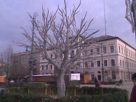Kép015jpg Debreceni palota.