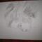 saját rajzolású 5