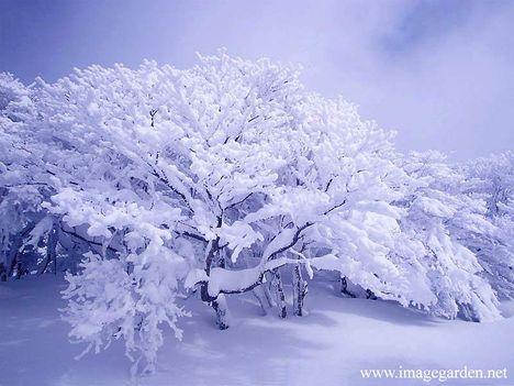 havas táj
