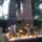 Református temető  5