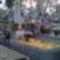 Református temető  6