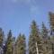 Ki hitte volna tegnap,hogy ilyen kék is lehet az ég?