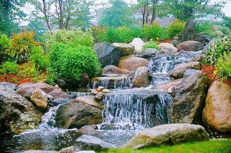 Gyönyörű természet 1