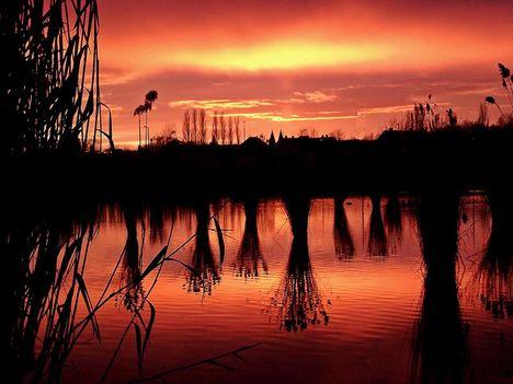 Bujtosi tó naplemente (fotó: Kovács Karcsi )