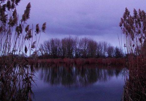 Bujtosi-tó