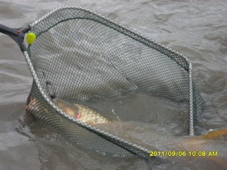 Horgászás, Jó  ugye?