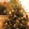 2O11 Anna Karácsonyfája