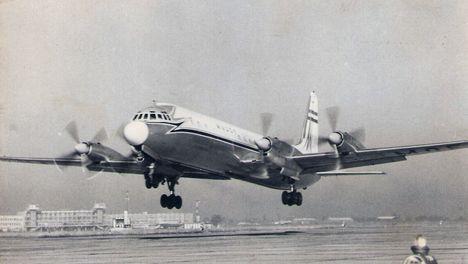 IL-18 2