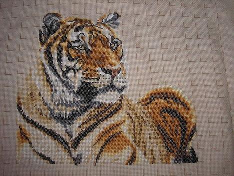 Tigris fél készen