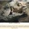 Vatikáni ásatások Santa Rosa Necropolis 17