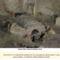 Vatikáni ásatások Santa Rosa Necropolis 27