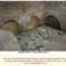 Vatikáni ásatások Santa Rosa Necropolis 3