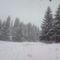 Húll a hó Nyugaton