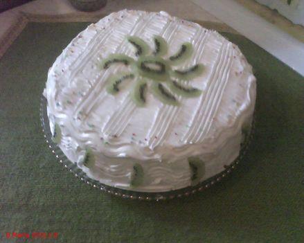 torta kishugomnak 5