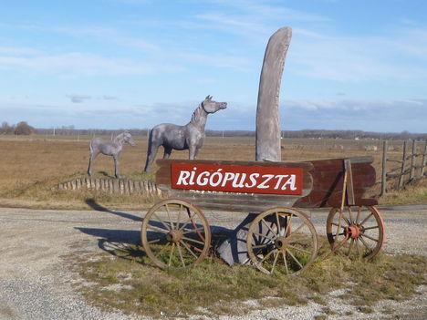 Mecsér, Rigópuszta, 2012. január 06.