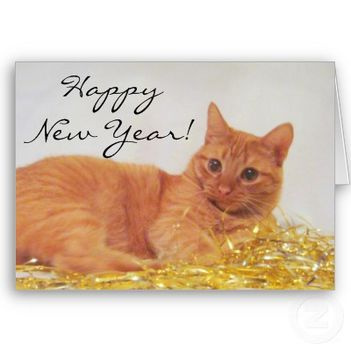 sparkle_cat_2009_happy_new_year_card-p137031303743753718qqld_400