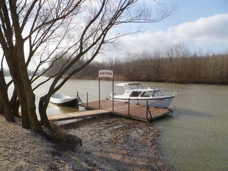 Halászi, Mosoni-Duna a Babos majornál, 2012. január 26.-án