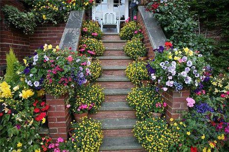 Virágok, melyek Isten dicsőségét hírdetik 4