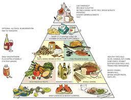 Táplálékok szerepe az egészségben