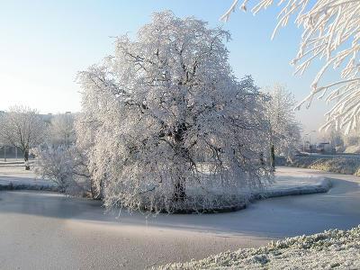 megjött az igazi tél 7