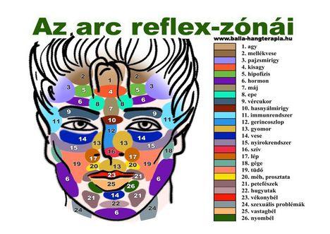 Az arc reflexzónái