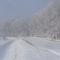 Tápiógyörgye  téli táj