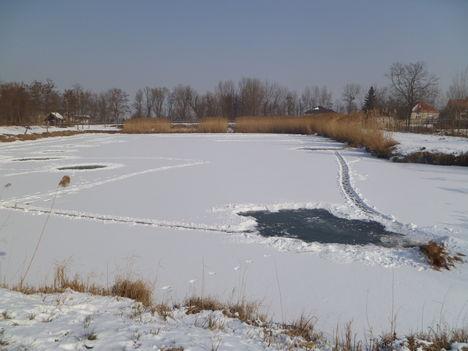 Darnózseli, a Mikota tó 2012.február 12.-én