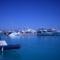 2010-01-21 - 2010-02-04- Hurghada 086