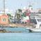 2010-01-21 - 2010-02-04- Hurghada 192