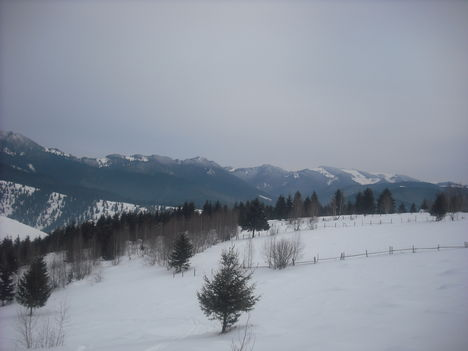 Február Revendikán