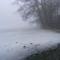 Lillafüredi tó ködben
