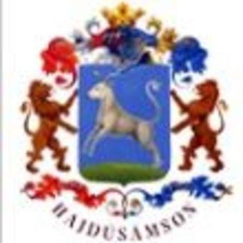 A város címere