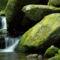 Csodálatos-természet-