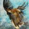 Égi madár II .