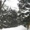 Havazás 2012.02