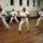 Karate-007_137834_66164_t
