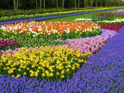 Itt a tavasz!