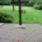 SOPRON-Hősök temetője
