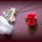 csipkevirág nyaklánc 3