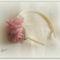 hajráf mályva rózsás3