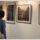 Tolnay Imre kiállítása