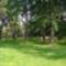 Rovinj park /Punta corrente./ 4
