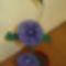harisnya virág 002