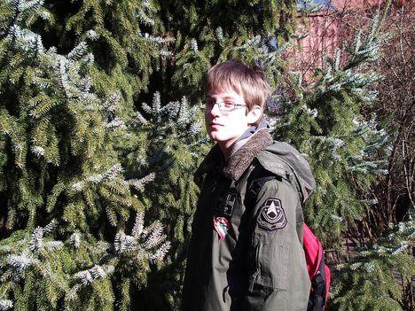 Karcsi és a szerb luc (Picea omorica).