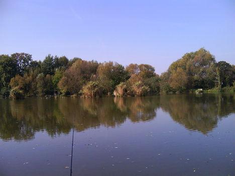 Horgásztó5