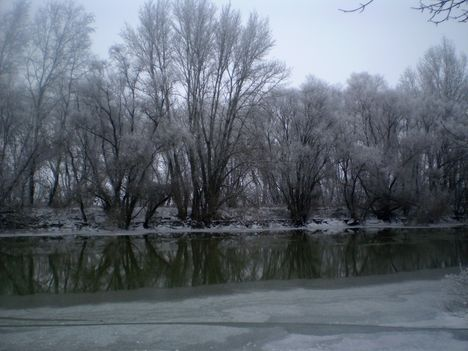 Téli képek 6