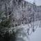 Téli képek 8