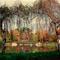 Debreceni nagyerdő