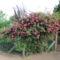 Kertészeklub vezetőjének  képei 2